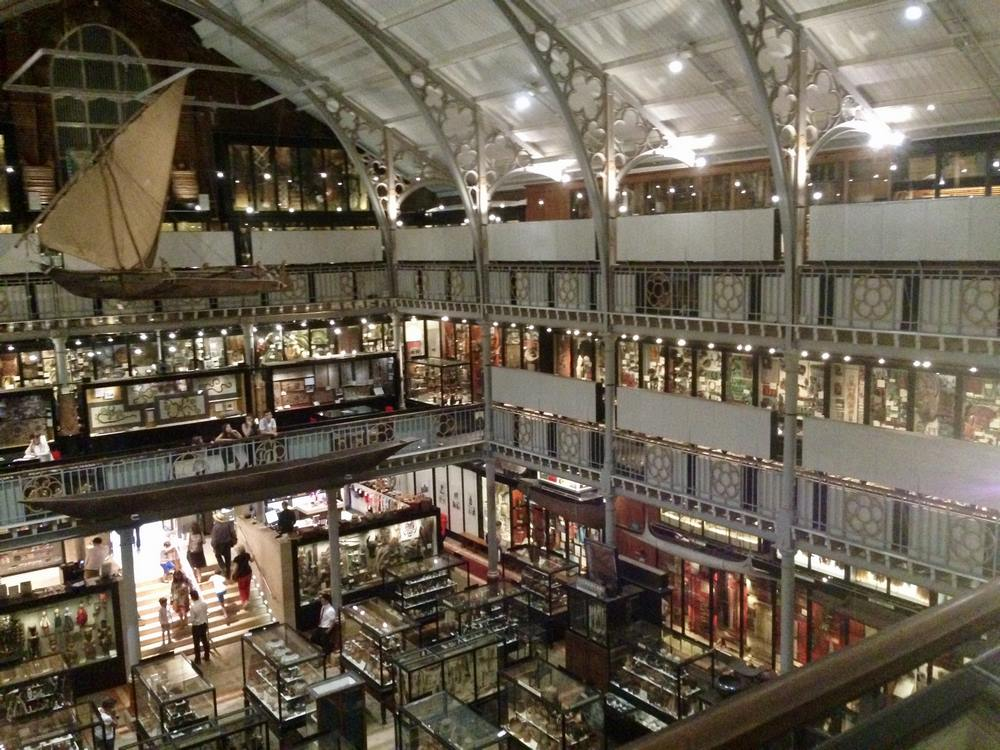 Inside the Pitt Rivers